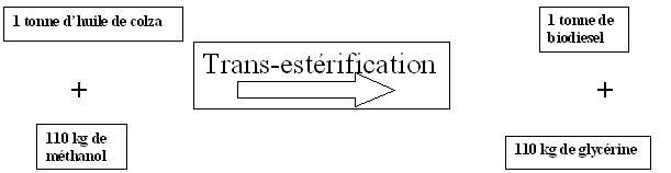 trans-esterification.jpg